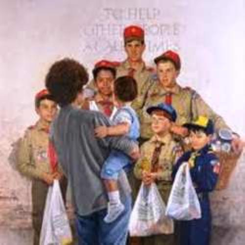 Scouts doing community service