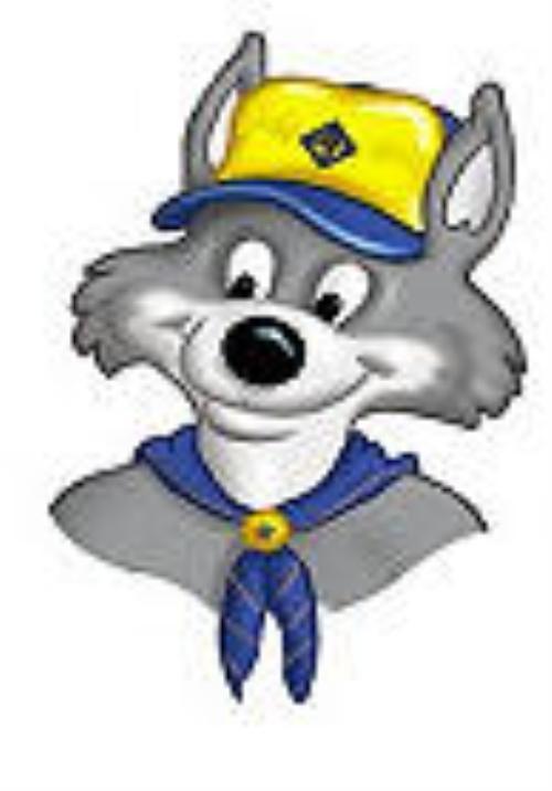 Akela Wolf